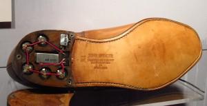 shoe-bug_33911-300x154